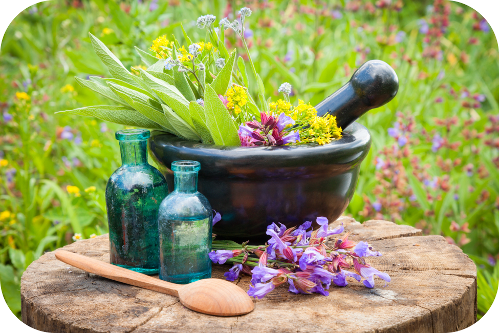 Mortar and Pestle with flowers