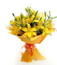 BF Special Yellow lily