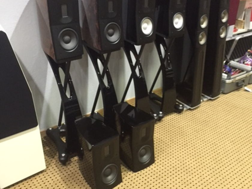 Raidho Acoustics APS D1 Black w/ black stands.  FREE SHIPPING.