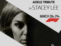 صورة ADELE TRIBUTE BY STACEY LEE