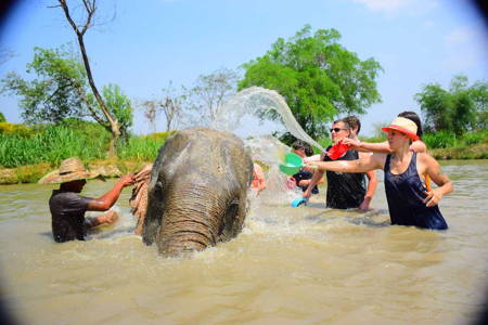 Elephant Care, ATV driving & Rafting