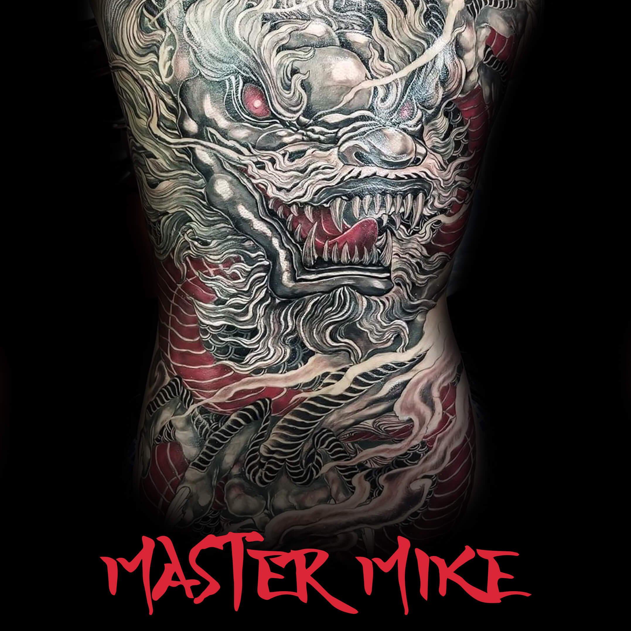 Master Mike Pro Series Set
