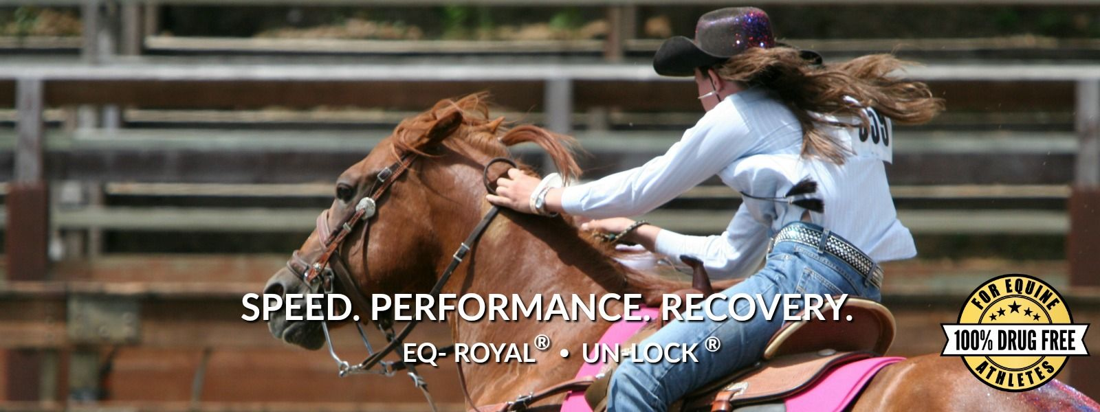western riding horse supplements