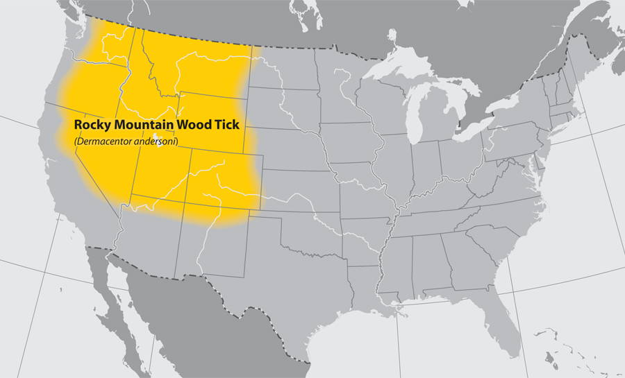 rocky mountain wood tick map of the states