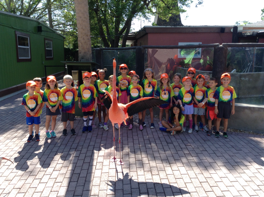Photo of the Explorers Summer Campers at Jungle Gardens