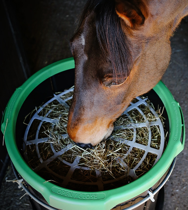 screen feeders at horse nation slow feeder feed diy hay pm shot