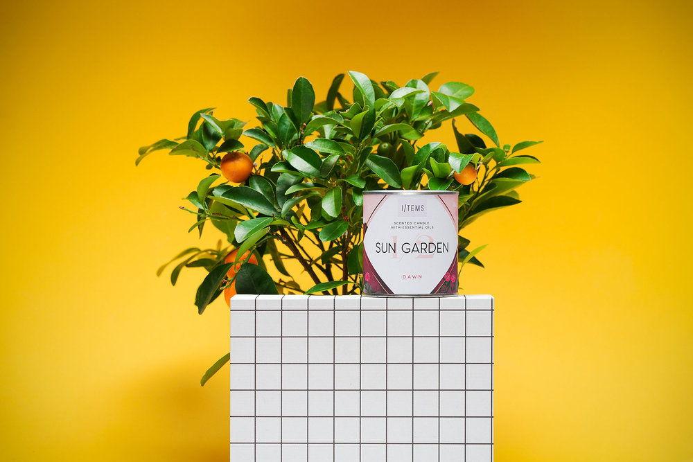 items_and_rozalina_burkova-1-2-sun_garden.jpg