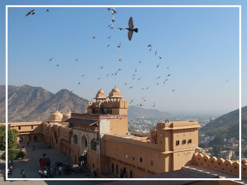 amer fort jaipur india, view from inside the fort of birds flying and the mountins