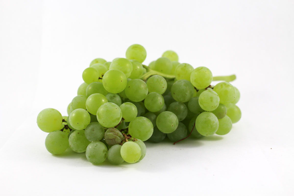 Himrod Grapes - Souto Farms Fresh BC Fruit