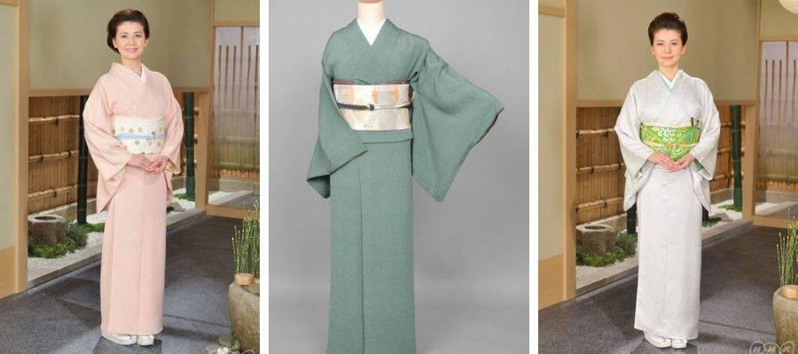 Iromuji (色無地) Kimono Robe