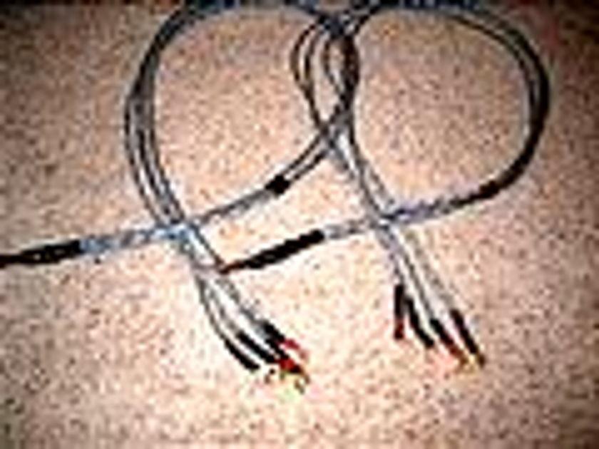 Audio Horizons Transparency shotgun bi-wire speaker cables