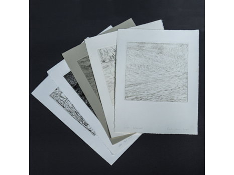 Emily Brown, Portfolio of Five Prints, State I of the Friends Print Project