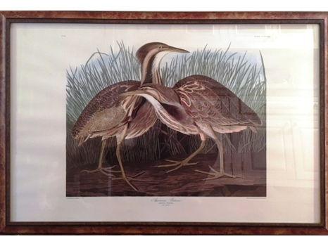 John J. Audubon Framed Print, Abbeville Edition #3