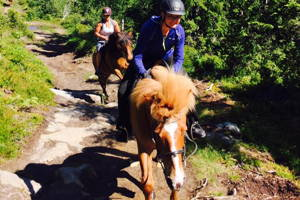 Horseback riding on a Norwegian farm, 1 hour