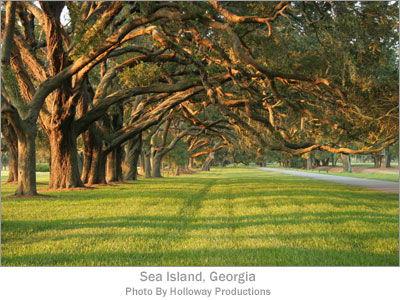 Sea Island, Georgia