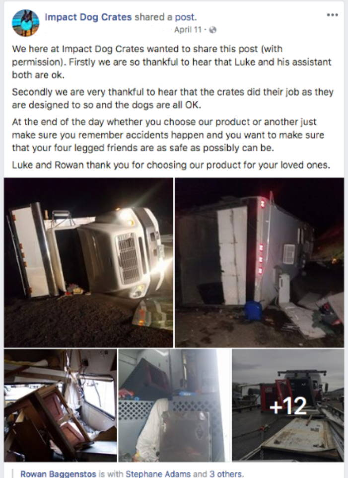 facebook post dog transport vehicle crash