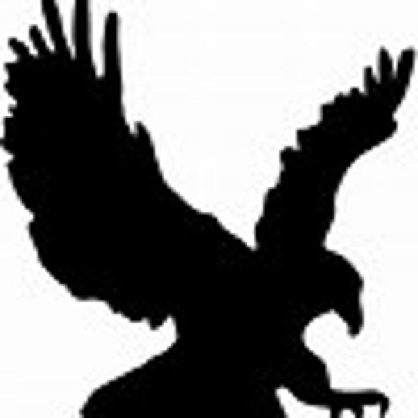 Aragon Eagles PTA