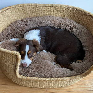 dog bed rattan