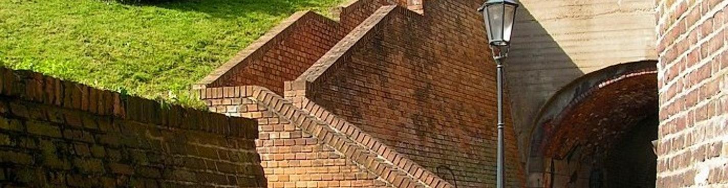 Вышеград — резиденция чешских королей (индивидуальная)