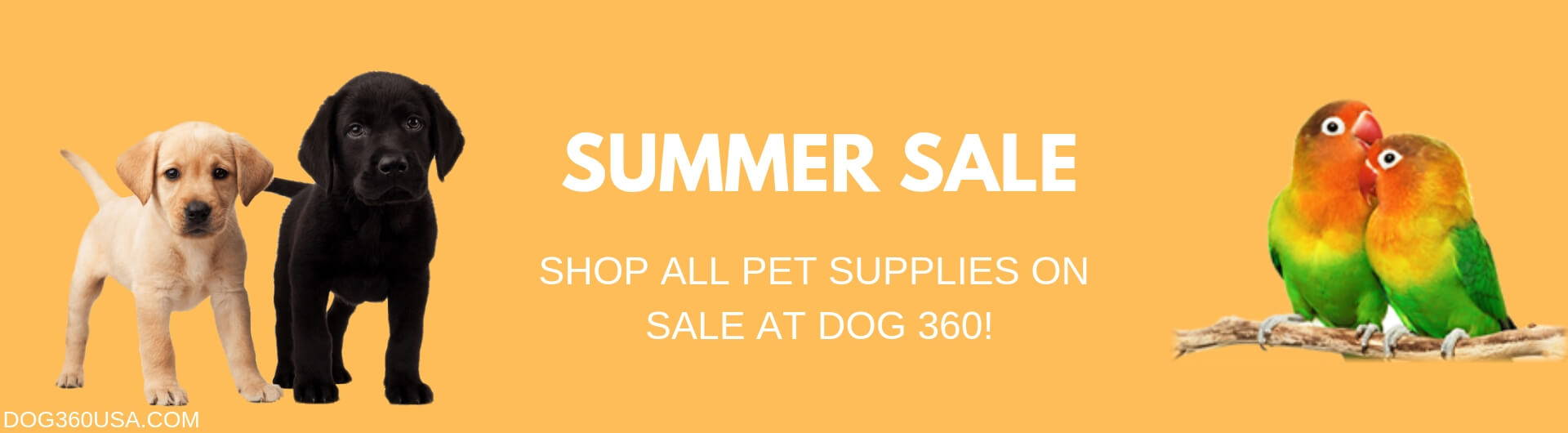 Aquatics sale dog 360 huge savings