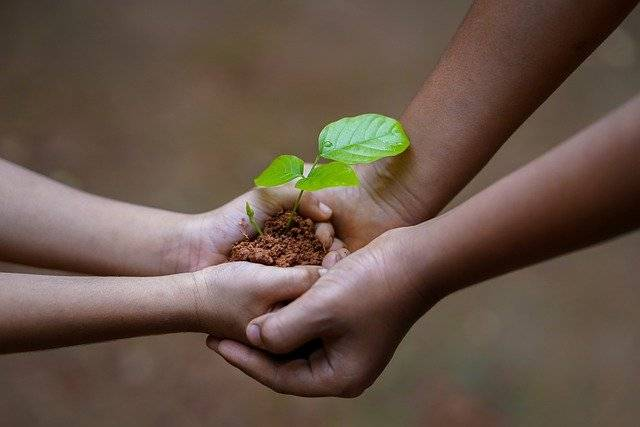 Two children hold a sapling in some soil to illustrate care and love for the planet and environment