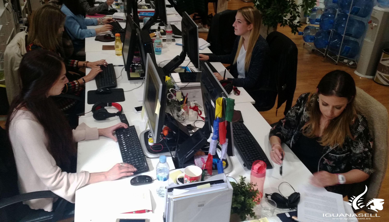 Sales Team at Iguana Sell