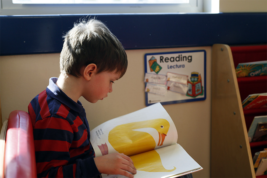 Primrose Early childhood education
