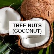 Coconut Tree Nuts