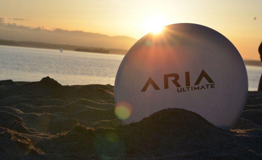 Read more about ARIA Ultimate as a precision disc company