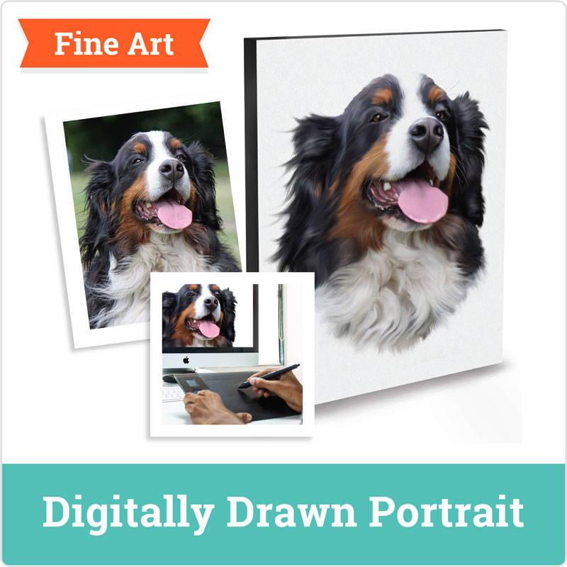 Dog Portrait - digital