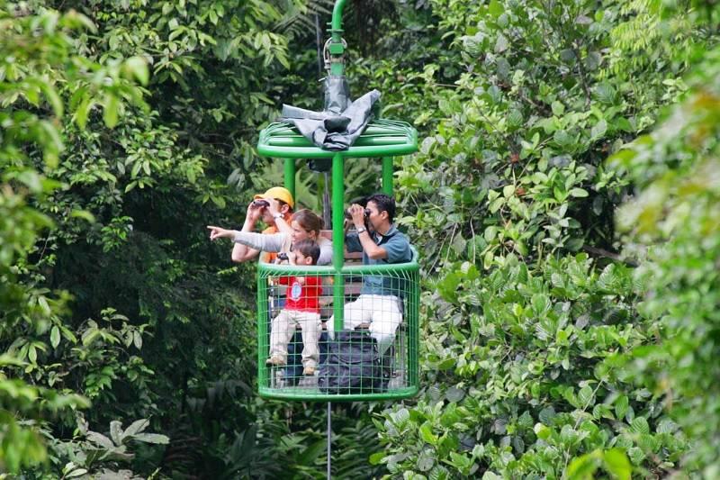Choose your Adventure & Rainforest Zip Lines Canopy Tours Attractions u0026 Excursions