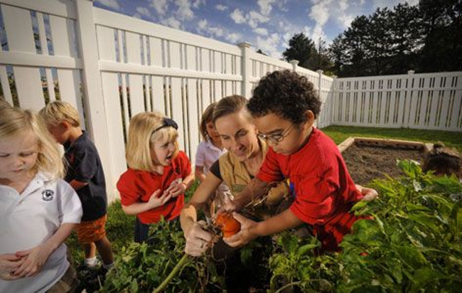 Primrose teacher helps her pre school student to pick a pumpkin from the garden