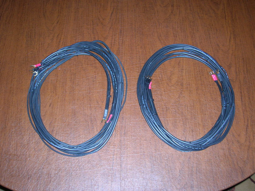 Acarian Systems Black Orpheus Bi-wire Speaker Cables - 10'