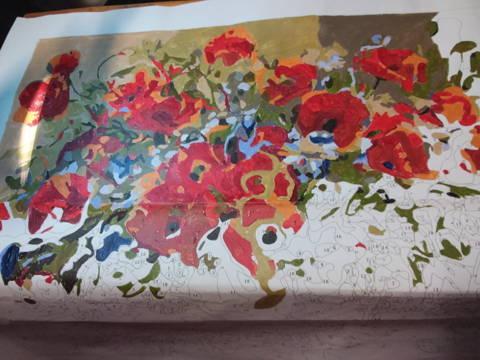 Peinture par numeros client d'un bouquet de coquelicots