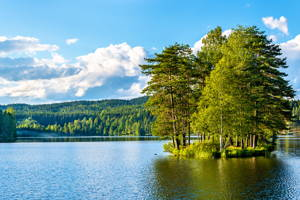 Easy Hike around Sognsvann Lake in Oslo