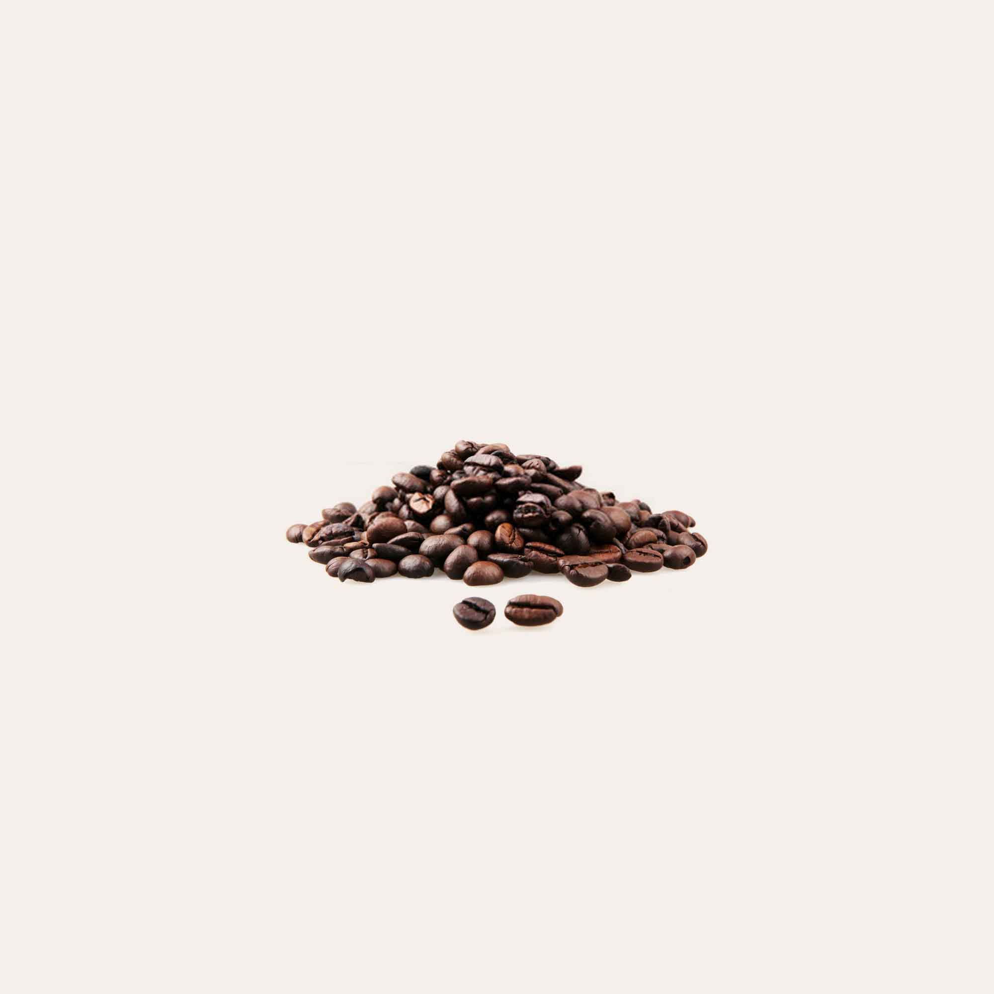 coffee beans on solid background