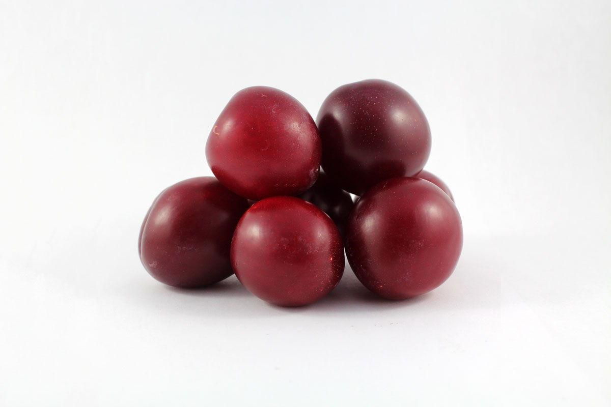 Santa Rosa Plum - Souto Farms Fresh BC Fruit