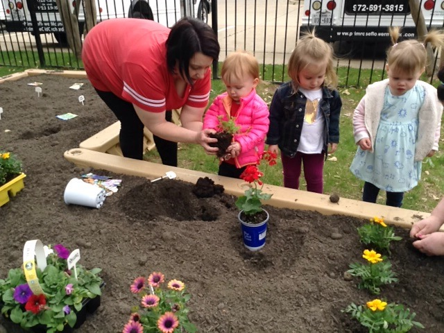 Ms. Kissia helps Early Preschool students plant in the Primose Patch