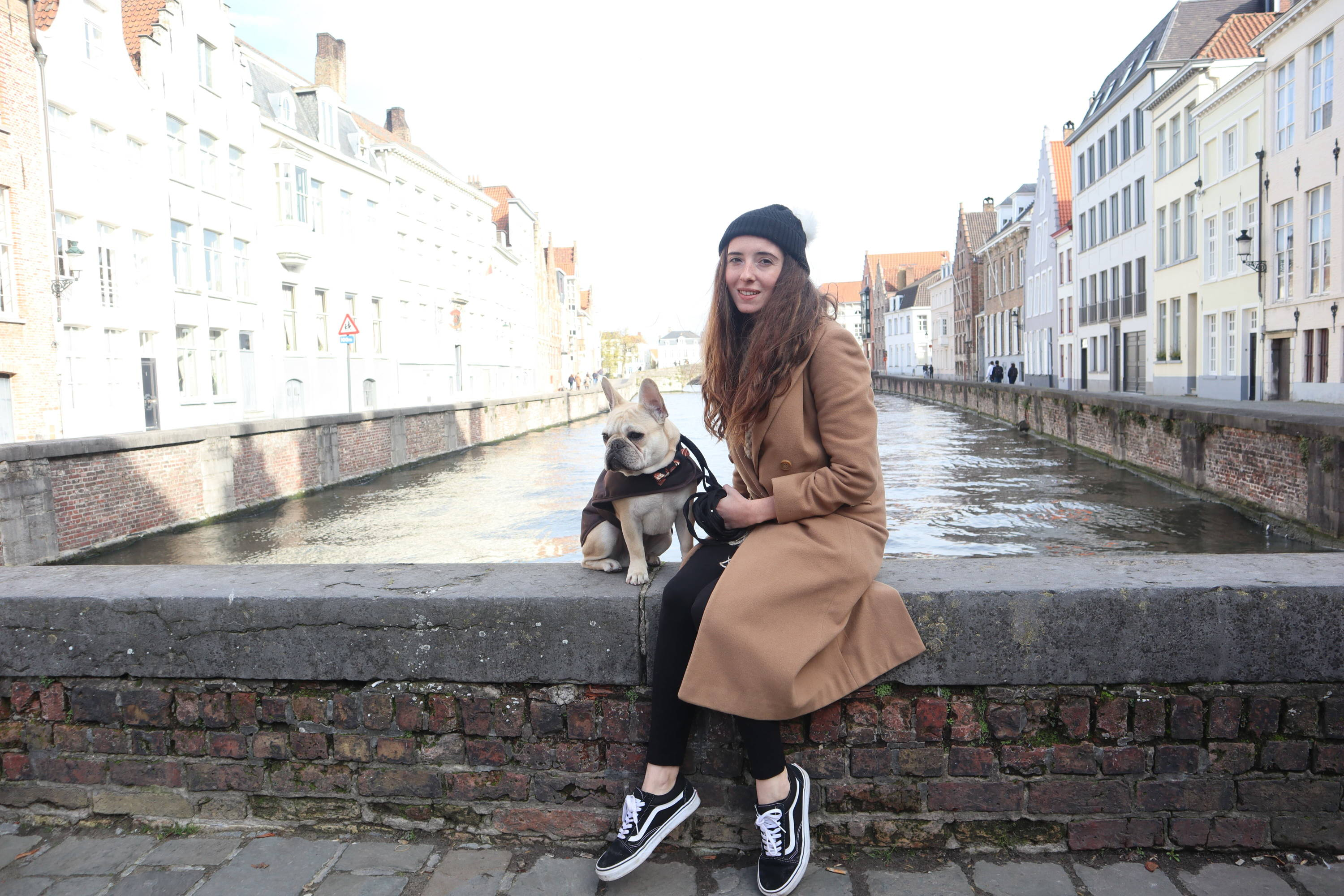 Human with Frenchie | Travelling with pets