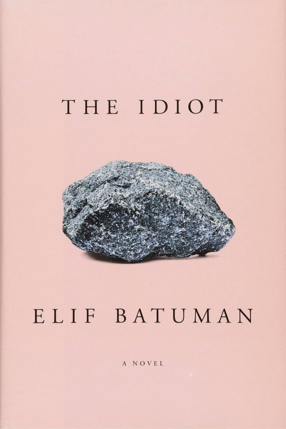 Summer Reading List 2018 The Idiot book
