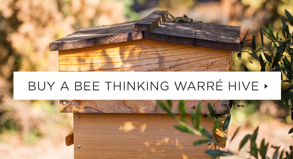 Buy a Bee Thinking Warre Hive