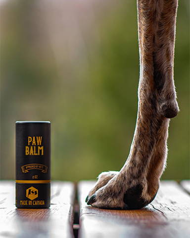 Application of Paw Balm