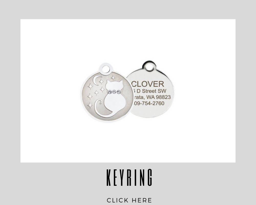 Custom Key Ring Corporate Dog Tags