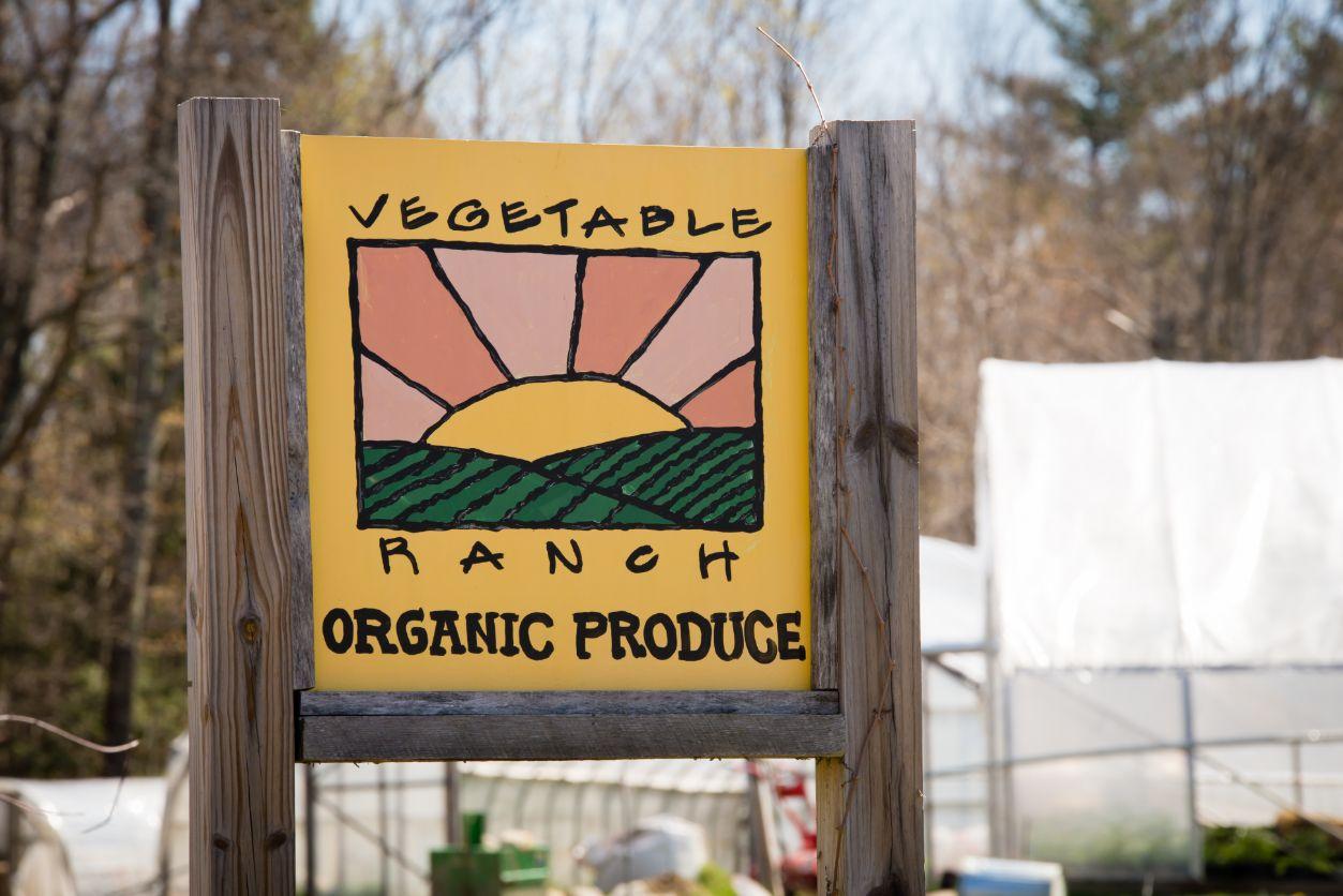 Vegetable Ranch