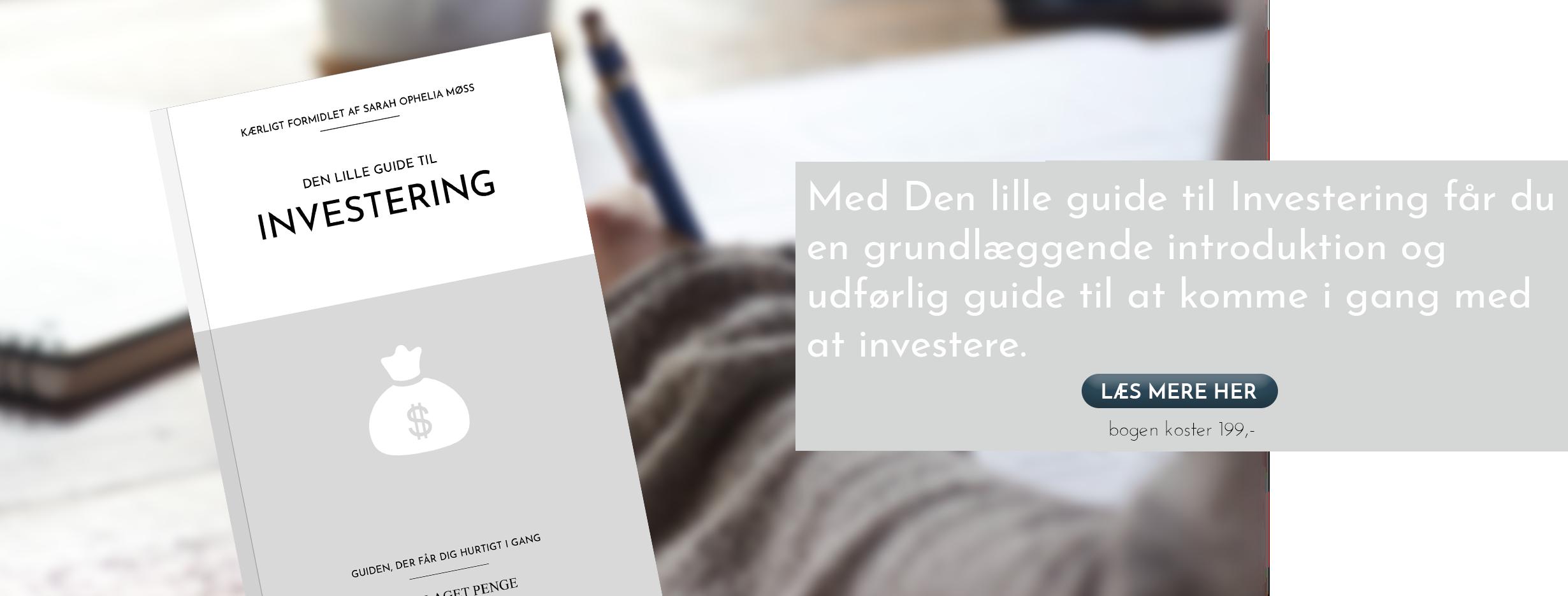 Køb den lille guide til investering her. Det er en bog hvor du får en grundlæggende introduktion og udførlig guide til at begynde at investere.