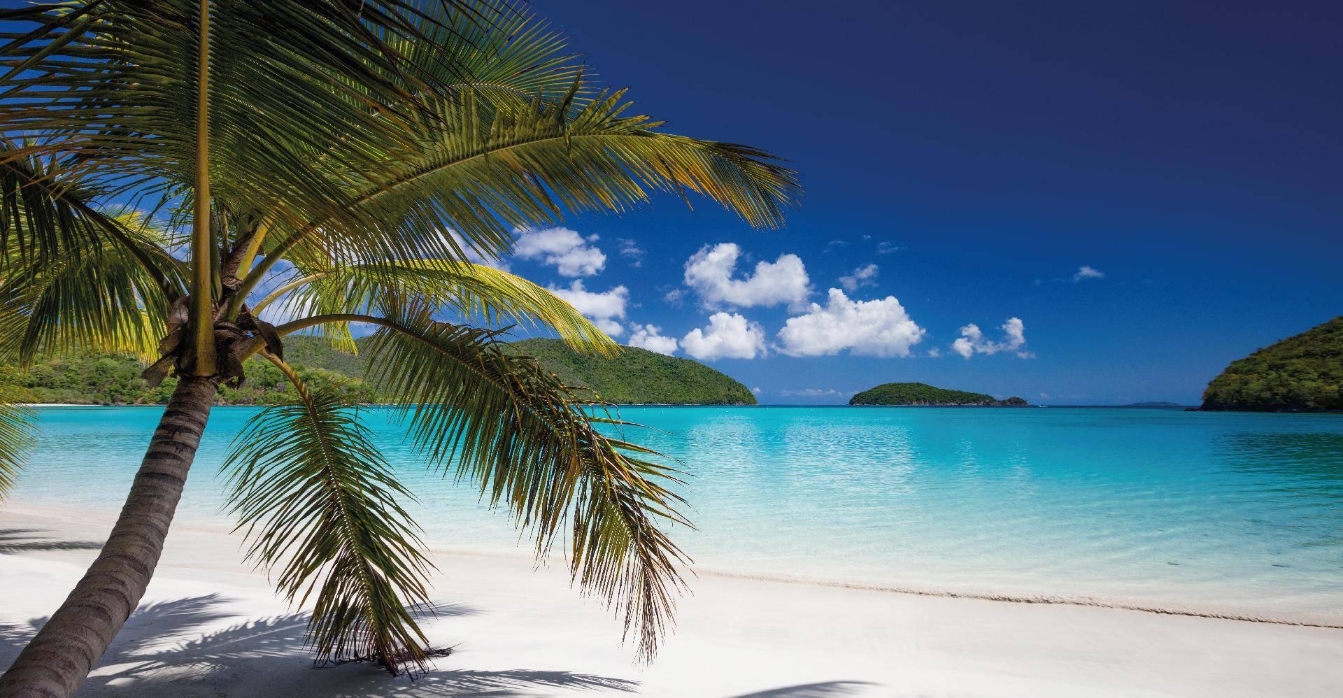 Tropical Beach Club
