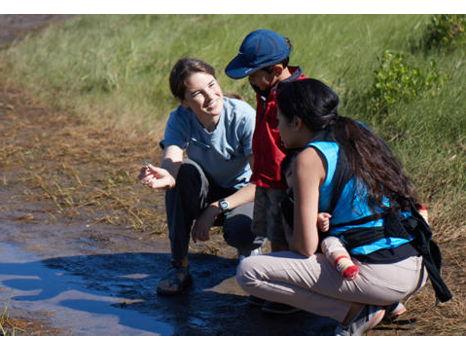 Birding Tour with Open World Explorers and 1 Year Membership to Mass Audubon