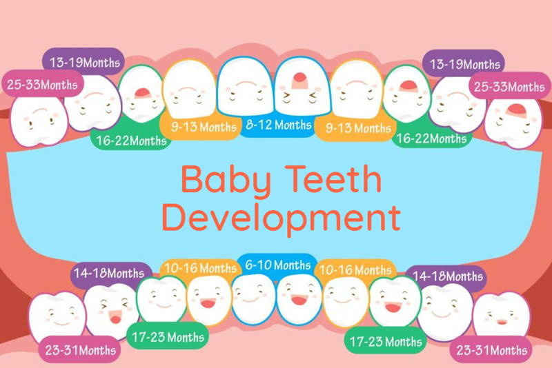 Baby teething timeline for when each tooth comes in