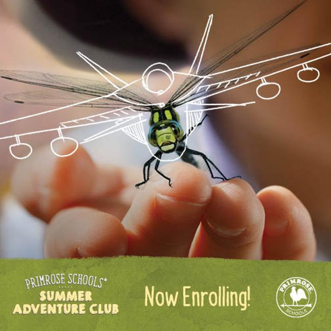 Summer Adventure Club Happening Now!