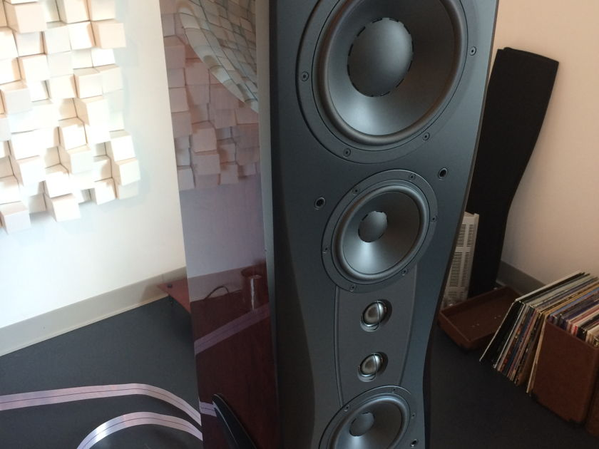 Dynaudio C4 Platinum Bordeaux DEMO